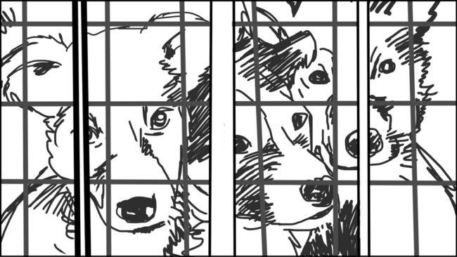 Goldilocks-Lets Take A Ride storyboard portfolio-14