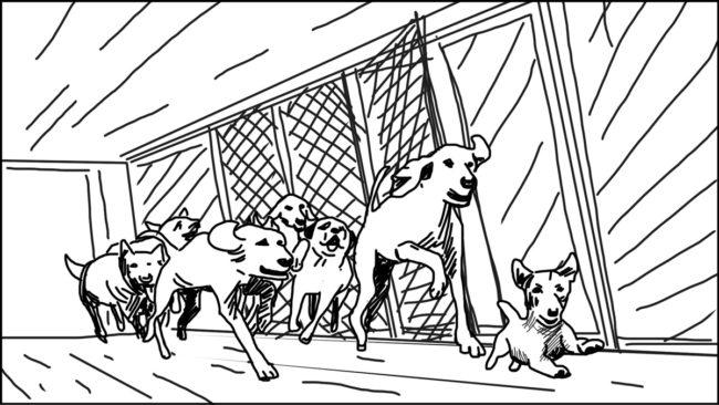 Goldilocks-Lets Take A Ride storyboard portfolio-20